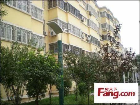 上海首套房买房要求会有哪一些 上海首套房┈